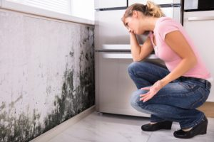 Moisture and Mold Growth: What You Need to Know