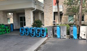 What To Expect From the Water Damage Restoration Process