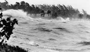 Prepare Your Property in Ocala, Florida for the Hurricane Season