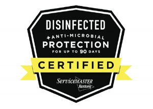 New Antimicrobial Service Single Application Kills Bacteria For Up To 90 Days
