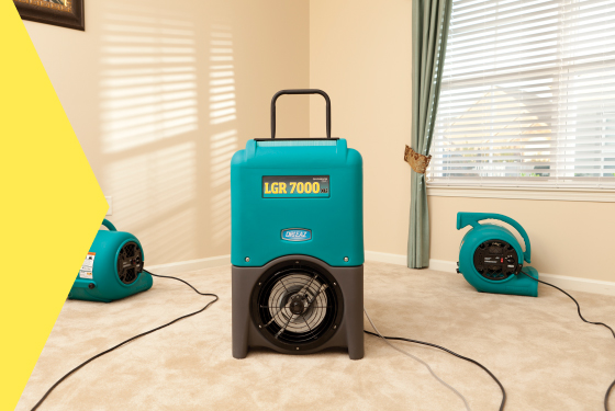 Drying / Dehumidification Services